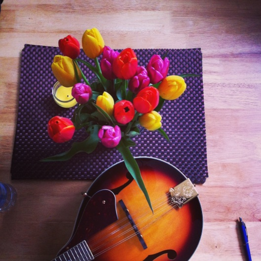 mando and tulips