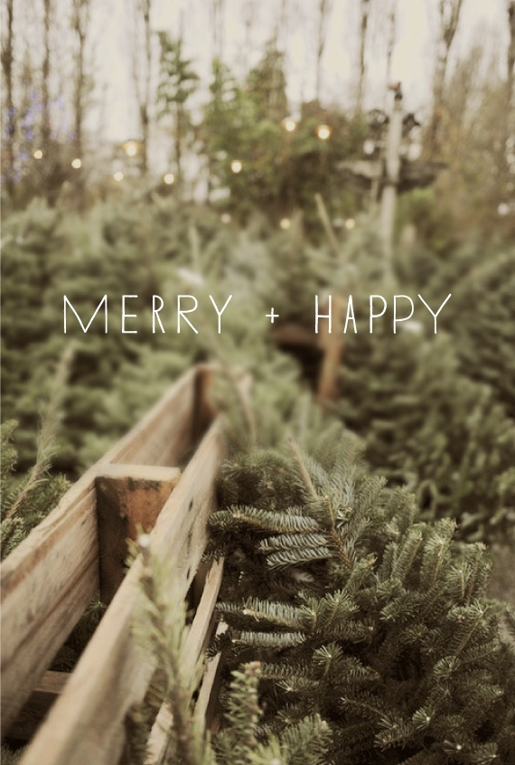 merry and happy